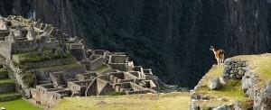 Machu Pichu 3